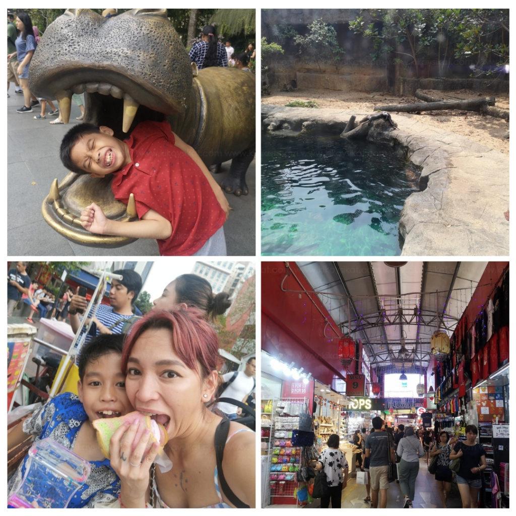 Singapore Zoo River Safari + Bugis Street Shopping
