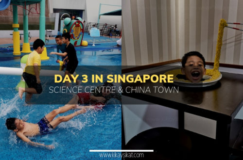 Good Times at Singapore Science Centre and Song Fa Bak Kut Teh at China Town Day 3 in SG